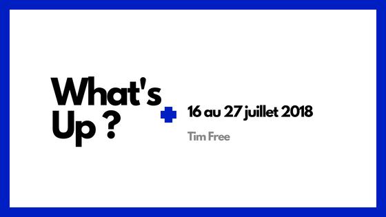 tim free freelance sap it oracle microsoft consultant indépendant